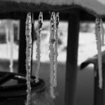 Sople w lutym