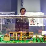 Wystawa Lego-7